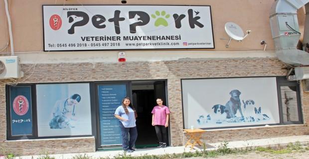 Can Dostlarınızın İkinci Evi Pet Park Veteriner Kliniği