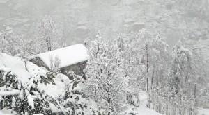dogu-karadenizdeki-kar-yagisi-174015