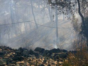 Antalya Kemer'de çıkan yangın kontrol altında