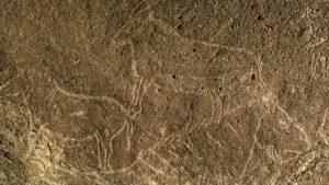 14 bin yıllık mağara çizimleri keşfedildi