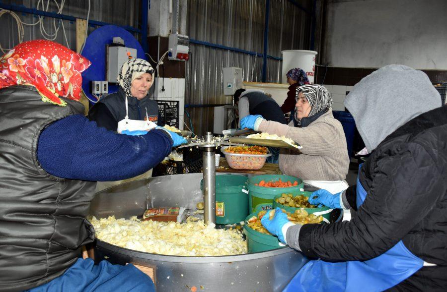 Bursa'nın Turşucu Köyünden Günde 10 Tır Ürün Çıkıyor