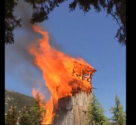 Lisinia Yaban  Hayat  Merkezindeki  Yangında  Kundaklama Şüphesi
