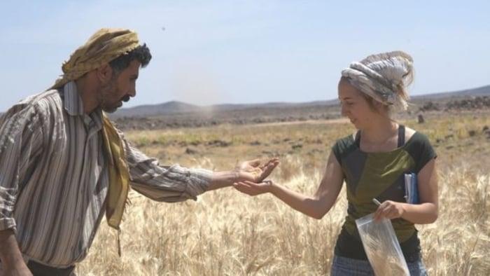 Ürdün'de 14 Bin Yıl Önceye Ait, Dünyanın En Eski Ekmek Tarifi Bulundu