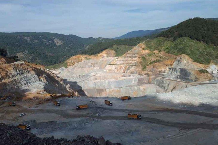 Çam Fıstığı Üreticilerinin Altın Madeni 'Tedirginliği' Mecliste