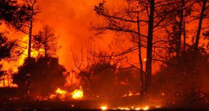 Komşu'daki  Yangında Enaz  50 Kişi  Yaşamını Yitirdi,150 Kişi de  Yaralandı