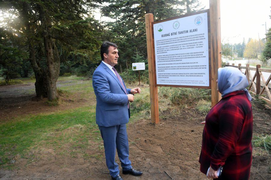Bursa Uludağ'ın 4 Noktasına Endemik Park Kurulacak