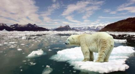 Ekolojik kriz büyüyor: 2 Ülkede Su Krizi Yaşanıyor!
