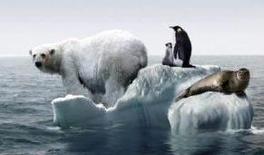 """""""İklim Değişikliğiyle Türlerin Yok Oluş Hızı da Arttı"""""""