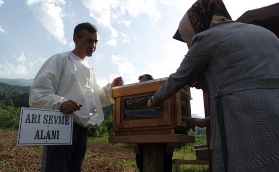 Bursa'da Arıların Kovan İçindeki Yaşantısını Öğrenmek İçin Geliyorlar