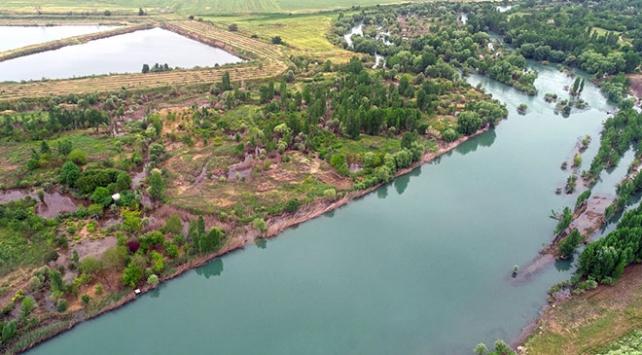 Nehirlerdeki Antibiotik Kirliliği Tehlike Sınırlarının Üzerinde