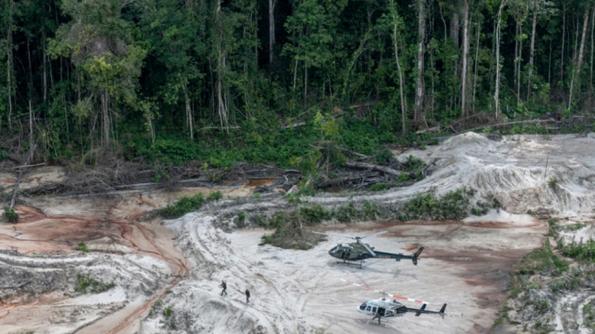 30 Günde 740 Kilometrekare Yağmur Ormanı Yok Edildi