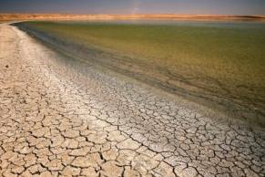 """IPCC: """"Arazi Tahribatına Son Vermeden İklim Krizini Önleyemeyiz"""""""