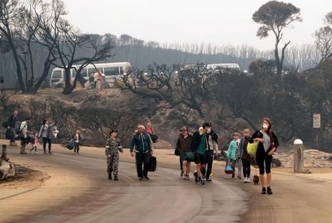 Ekoloji Birliği: Avustralya'da yanan her canlının acısını içimizde duyuyoruz