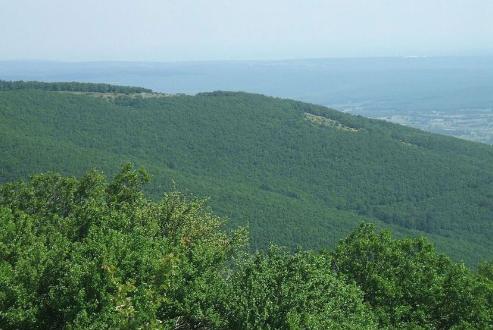Istranca ormanlarına kuvarsit ocağı açılmasına izin verilmedi