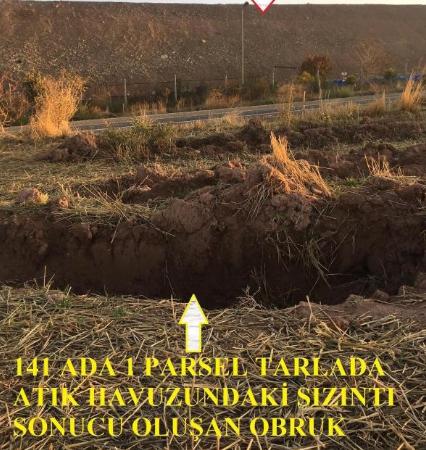 Tepeköy'deki altın madeni atık havuzundan siyanürlü su sızıntısı: Önlem alan yok