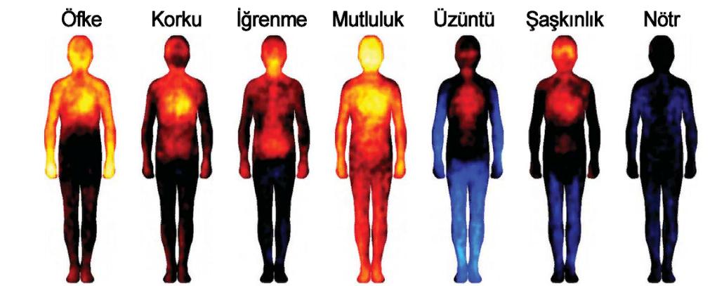 Vücut sıcaklığınız tüm yaşamınızı kontrol ediyor olabilir